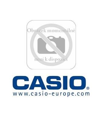 CASIO AD S42120AE K DT X/IT 5; 10000586