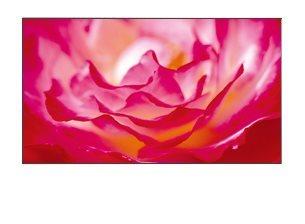 BENQ SL461A LCD dotykové; 9H.F08PT.NE4