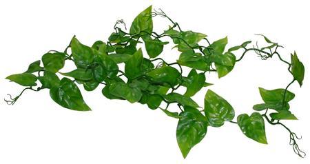 Lucky Reptile Jungle Vine Ivy Vine cca 200 cm; FP-64572