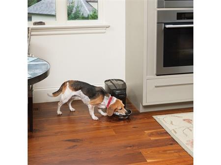 Krmítko, Healthy Pet Simply Feed; BG-PFD19-15521 - PetSafe Dávkovač krmiva Healthy Pet Simply Feed