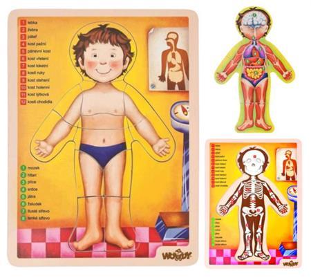 WOODY Oboustranné puzzle Lidské tělo; 117866