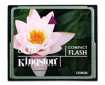 Kingston 8GB Compact Flash (CF)
